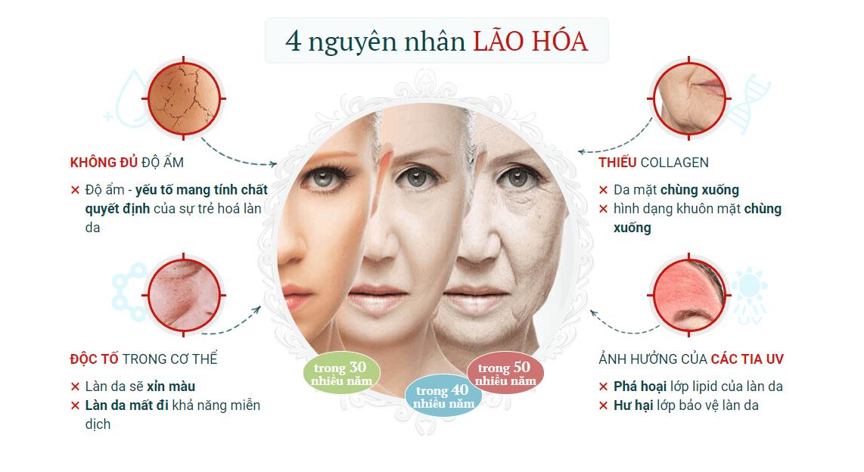 nguyen-nhan-lao-hoa-da