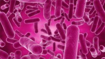 Xịt lợi khuẩn Skin Fresh đánh bay mụn tức thì hiệu quả 2
