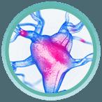 Thực hư tác dụng của viên sủi giảm cân KETO GURU 2