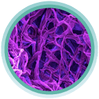 Thực hư tác dụng của viên sủi giảm cân KETO GURU 4
