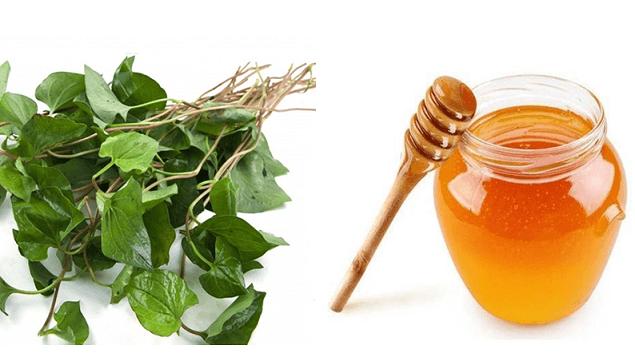 rau-diep-ca-va-mat-ong